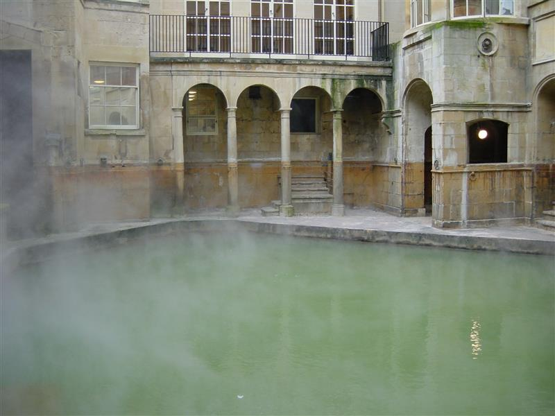 [i]Methylococcus capsulatus[/i] in Bath