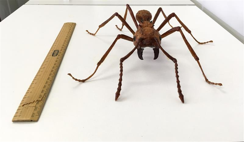 3D printed leafcutter ant
